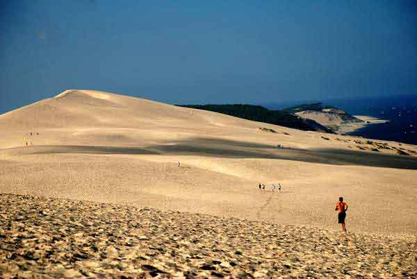 Best of Bordeaux Arcachon peninsula sand dunes