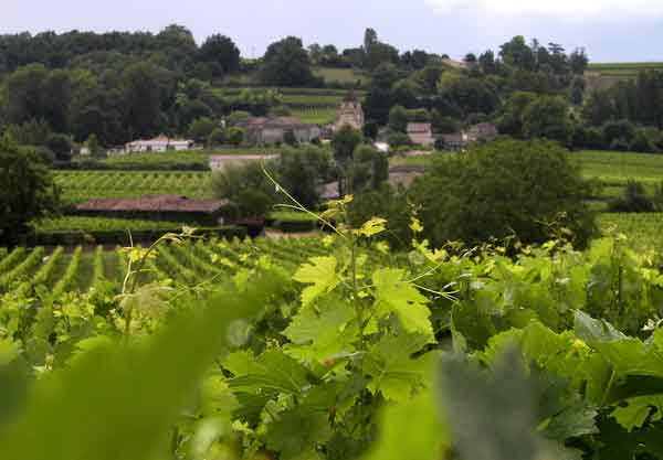 Best of Bordeaux St Emilion