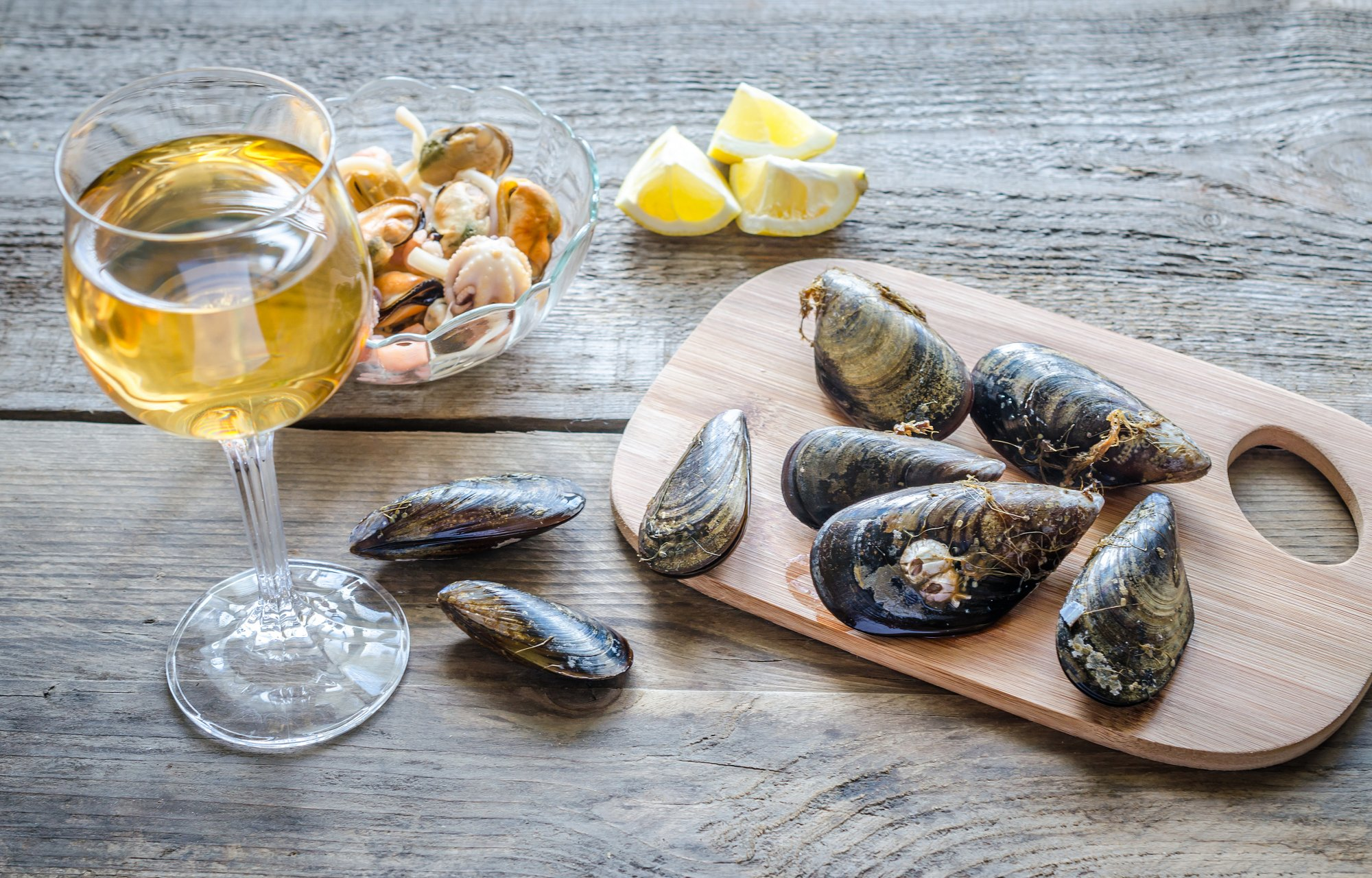 Seafood and wine pairing cellar tours for Sea city fish and chicken