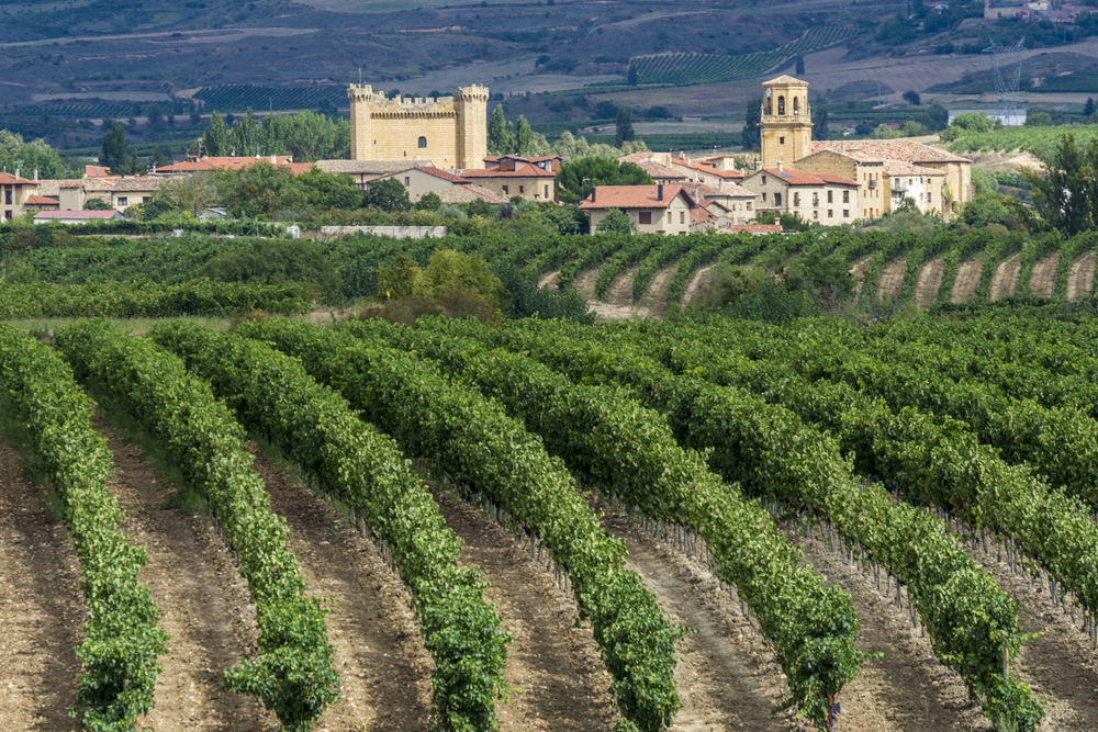 Best Spanish Winery Visits