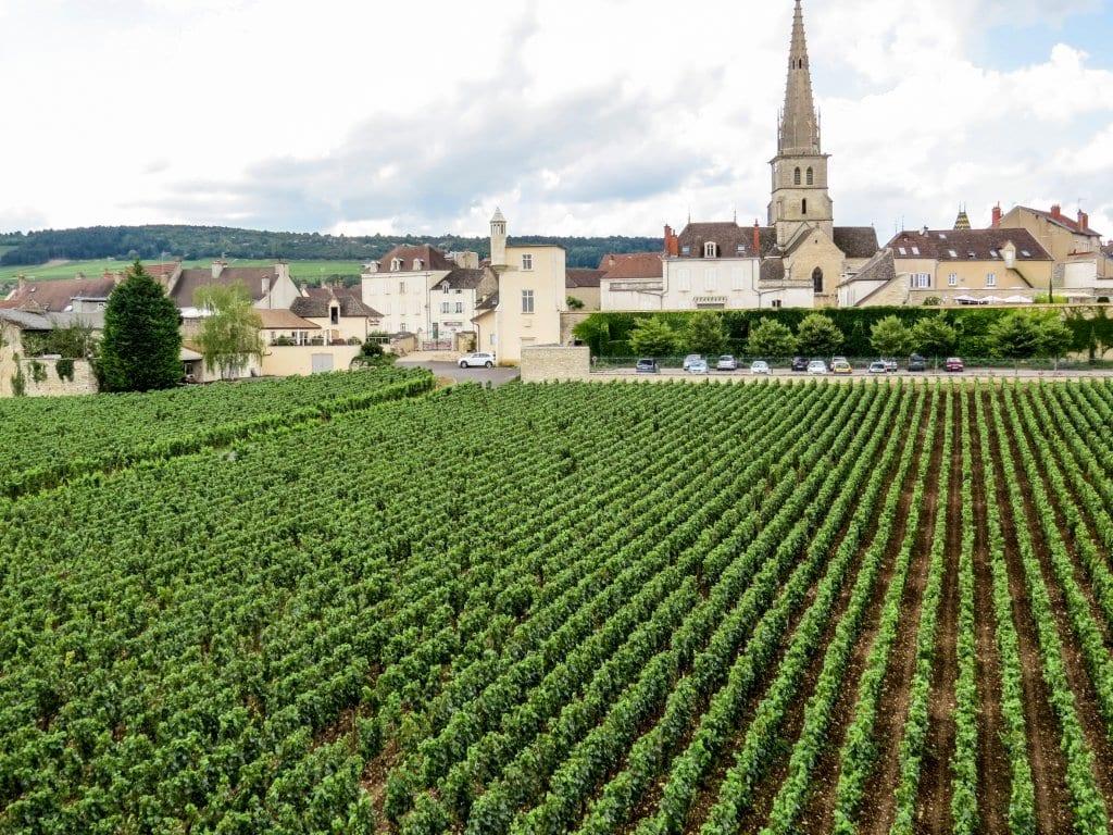 Meursault: Burgundy