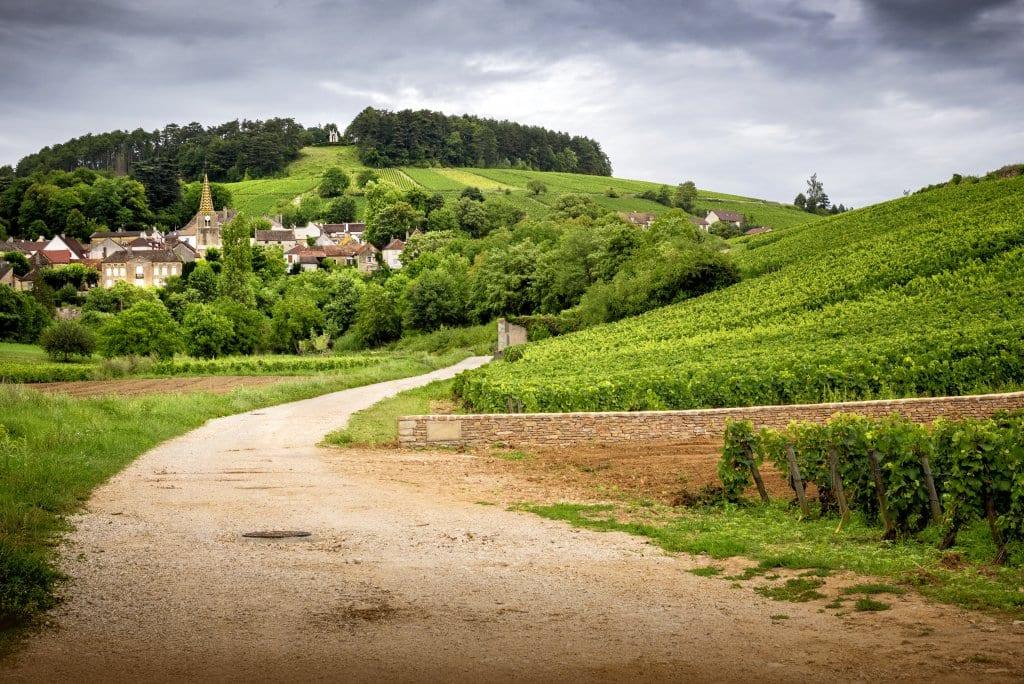 Pernand-Vergelesses: Burgundy
