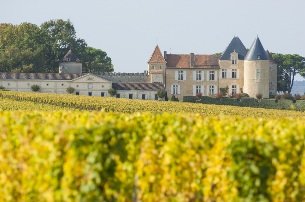 Yquem Vineyards, Bordeaux