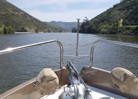 Douro Valley Boat Cruise
