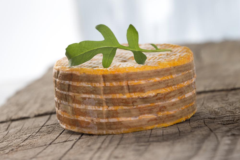 Livarot Cheese