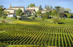 Vineyards Saint Emilion