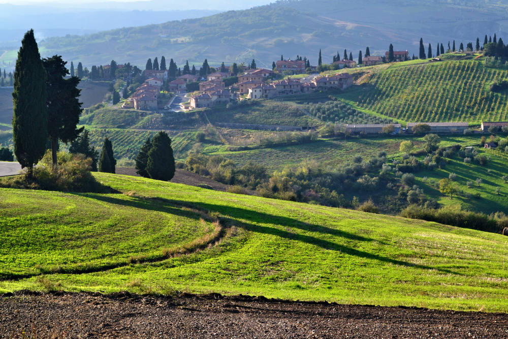 Salcheto: Tuscan Winery Experiences