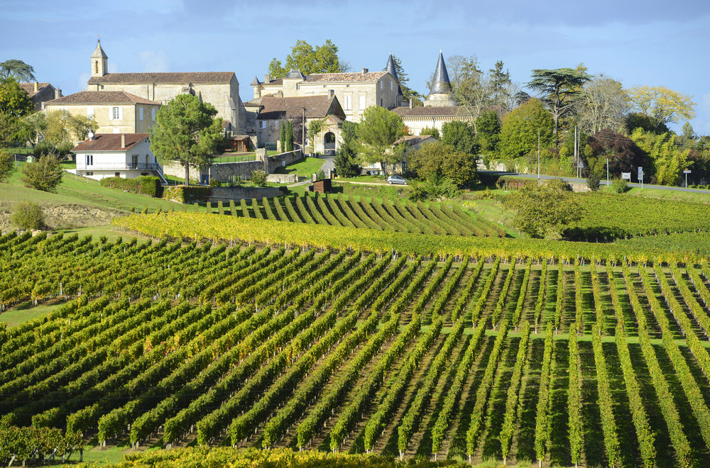 Bordeaux: Best Winery Experiences