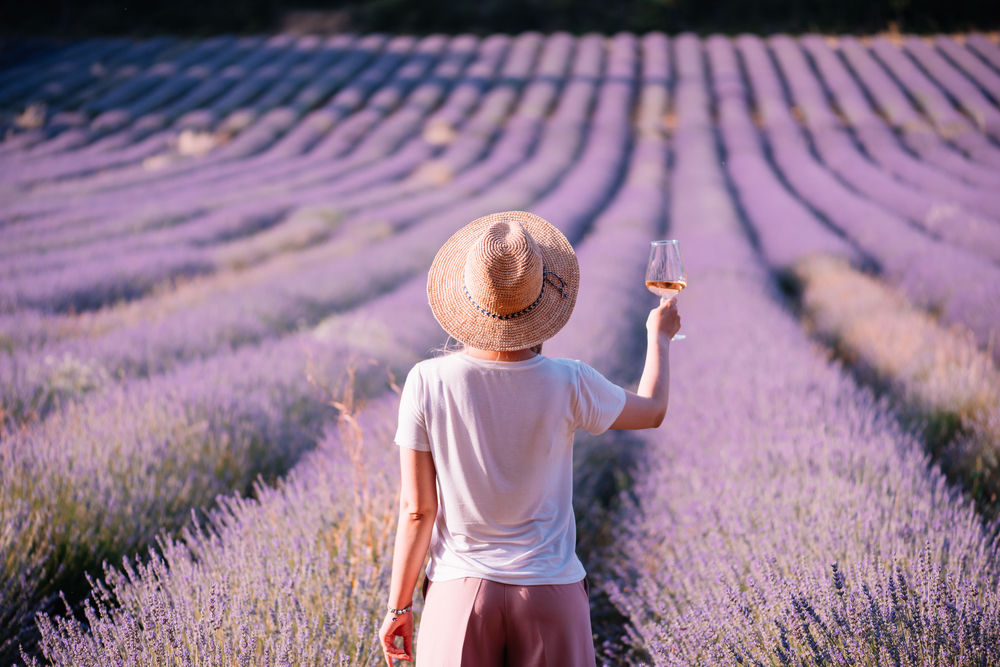 Ten delicious rose wines from Provence