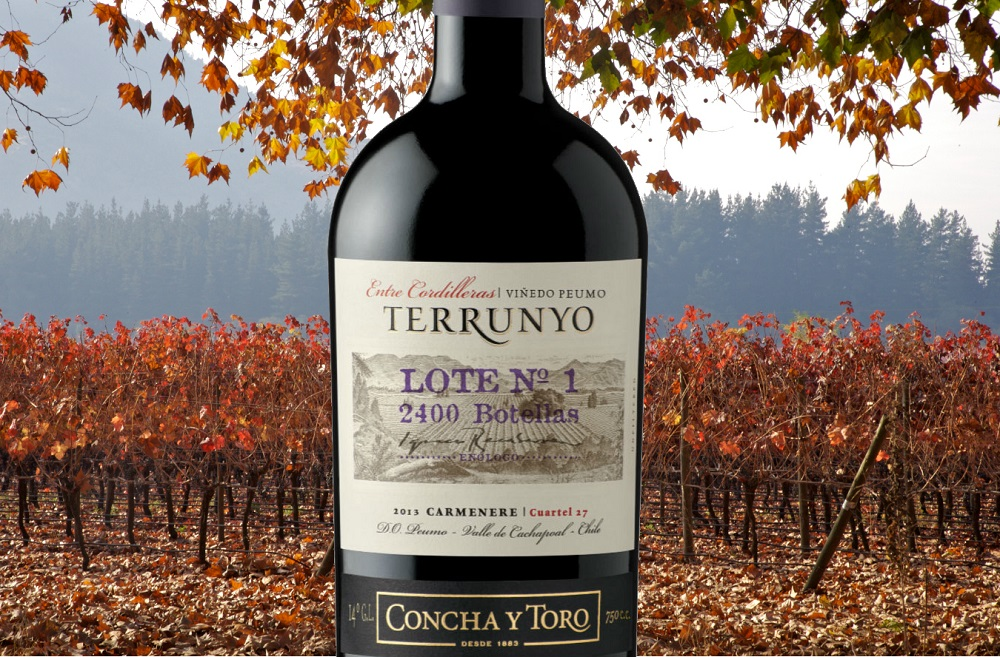 Concha Y Toro Terrunyo – Carmenere Peumo Vineyard Block 27