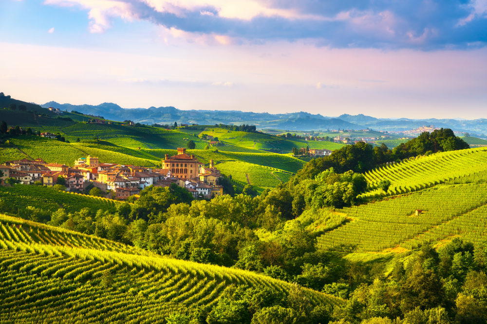 barolo-the-king-of-wines