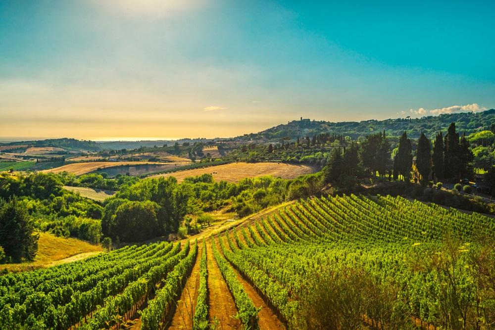 super-tuscan-wines