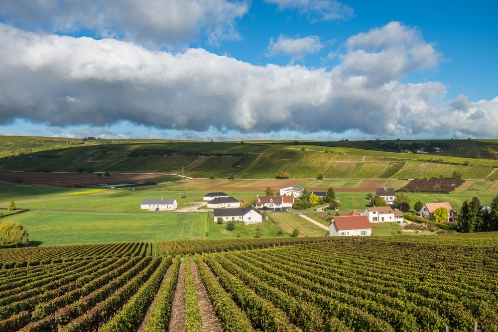 Introduction to the magic of Sancerre