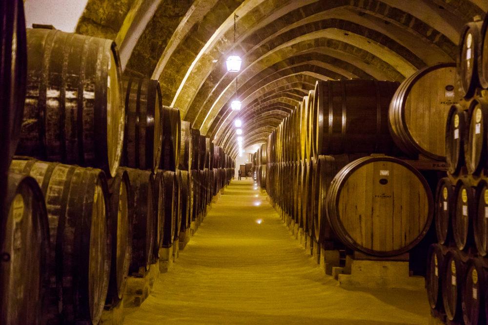 Marsala Wine Barrels