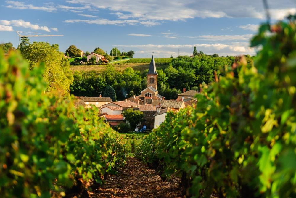 wine-country-tours-lyon