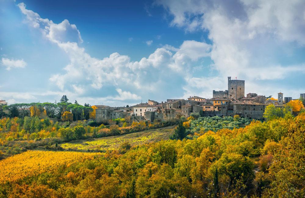 Vineyards of Castellina in Chianti