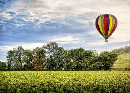 Sobrevolando los viñedos en globo