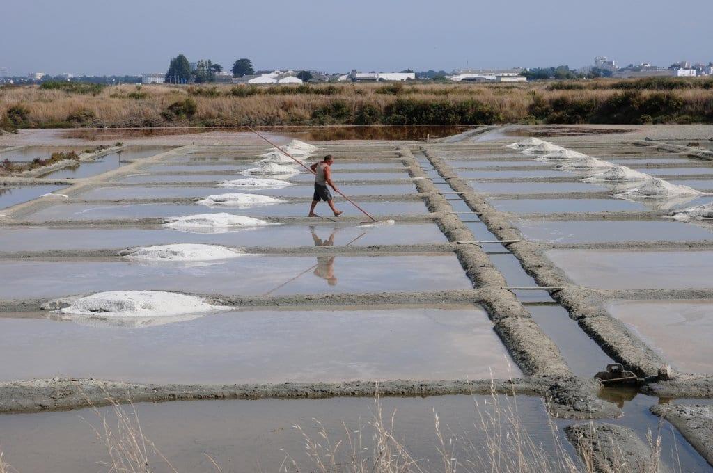 Salt evaporation pond in Guérande