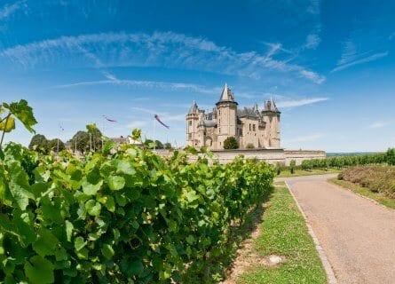 Scenic vineyards in Saumur