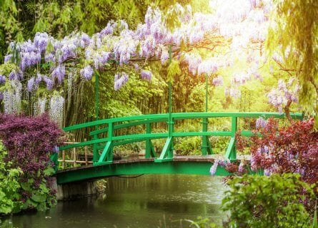 Giverny Garden, Normandy