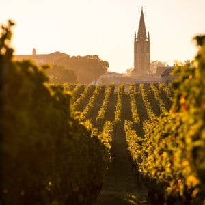Saint Emilion Sunrise