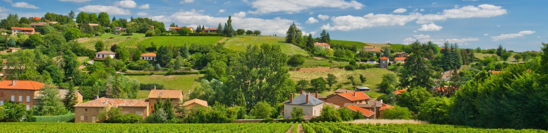 Ch teau de la chaize french winery aoc brouilly for Brouilly chateau de la chaise