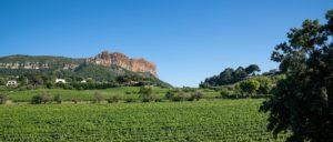 wine-regions - cassis-wine-region