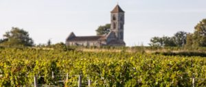 wine-regions - graves-wine-region