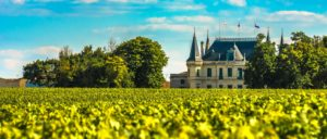 wine-regions - margaux-wine-region
