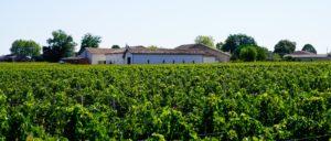 wine-regions - pomerol-wine-region