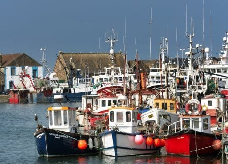Fishing boats in Howth harbor