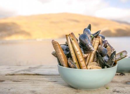 Fresh shell fish from Killary Harbour