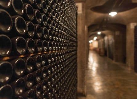 Ca Del Bosco cellar