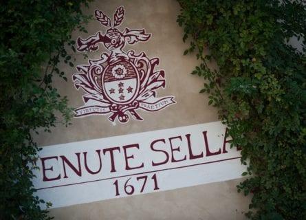 lake-maggiore - tenute-sella-winery