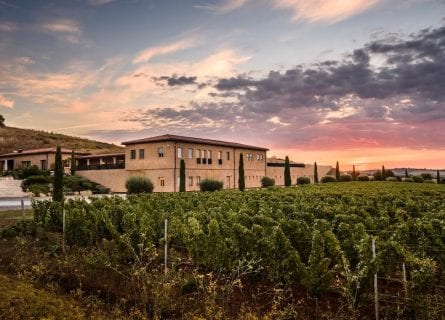 Monteverro Winery