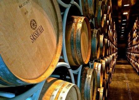 Sassicia winery