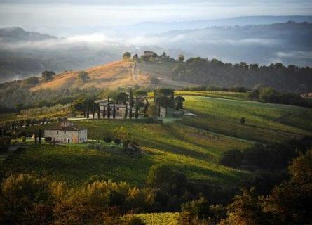orvieto - decugnano-barbi-winery