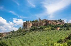 Orvieto view from vineyards
