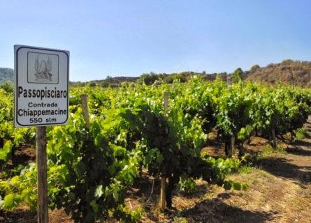 Passopisciaro wine estate on the slopes of Mt. Etna