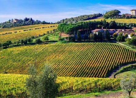 Picture perfect Chianti countryside