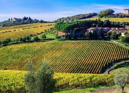 Picture perfect Chianti countryside