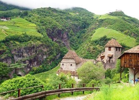 Vineyards in Bolzano