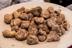 White Tuscan Truffles