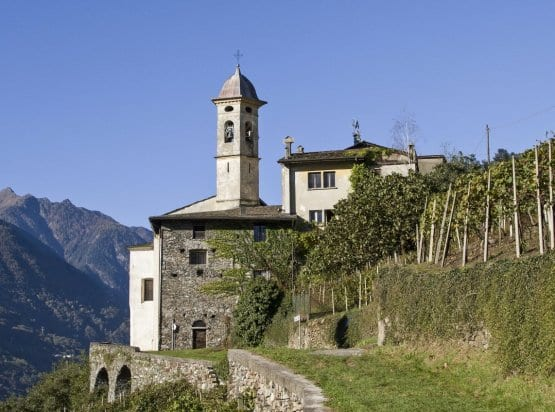 Valtellina Wine Tour