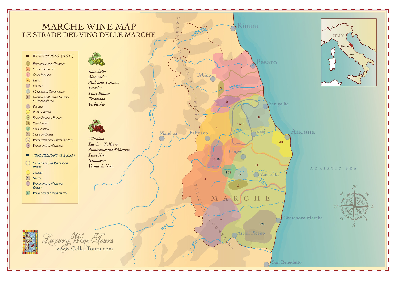 Marche Wine Region Map