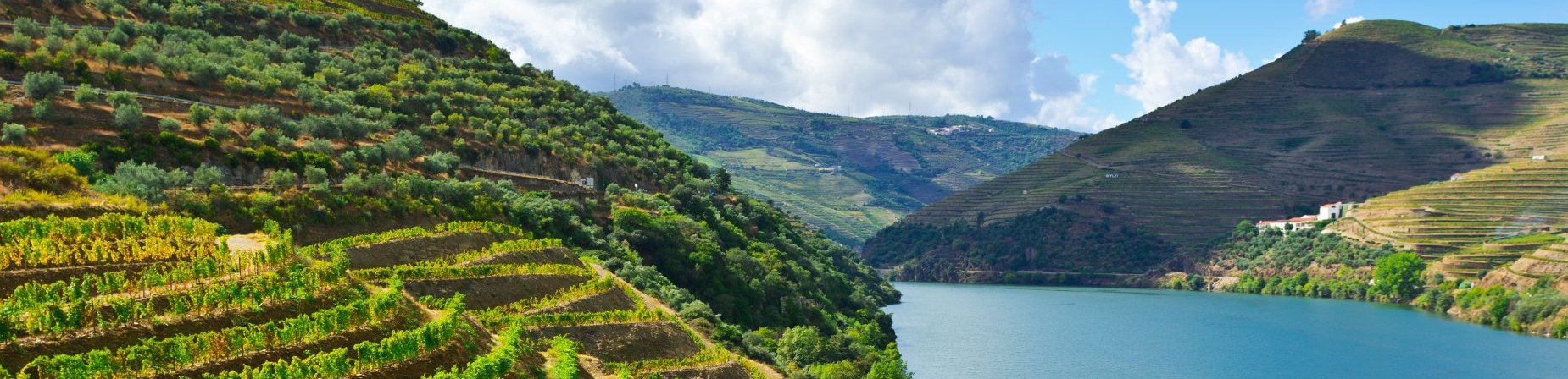 Douro Valley Wine Tours » One of the most beautiful wine regions in ...