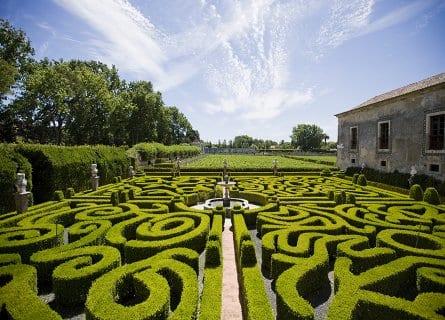 Beautiful gardens of Quinta da Bacalhôa