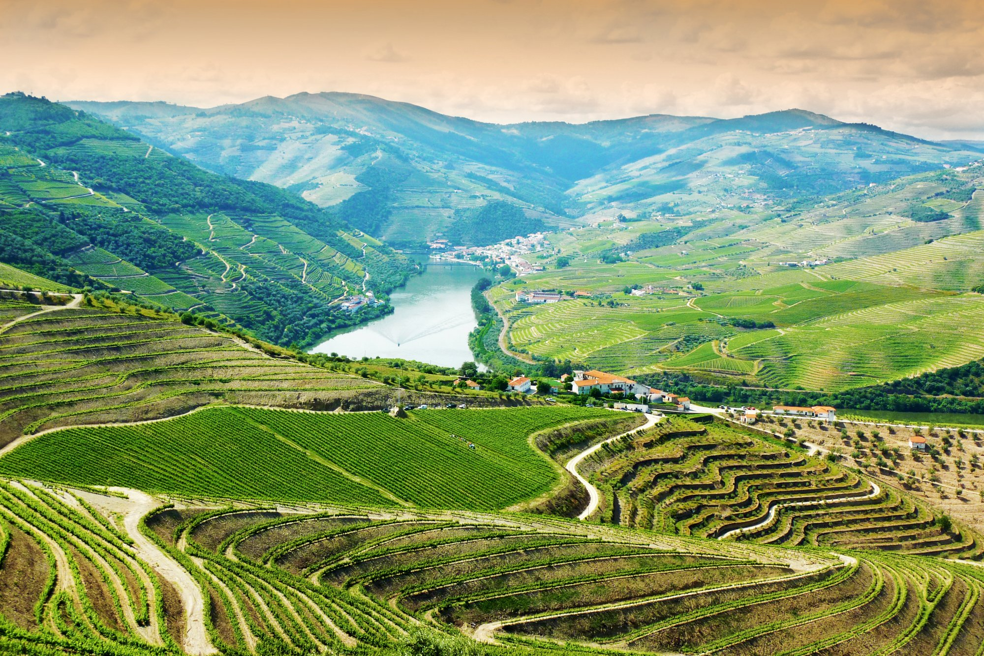 Wine Lovers Guide to the Douro Valley » Cellar Tours