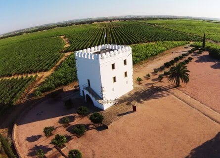 Esporao winery, Alentejo