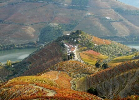The stunning Quinta do Crasto, Douro Valley